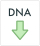 Export all DNA variants in this set